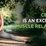 Uleiul de CBD cea mai buna alternativa pentru relaxare